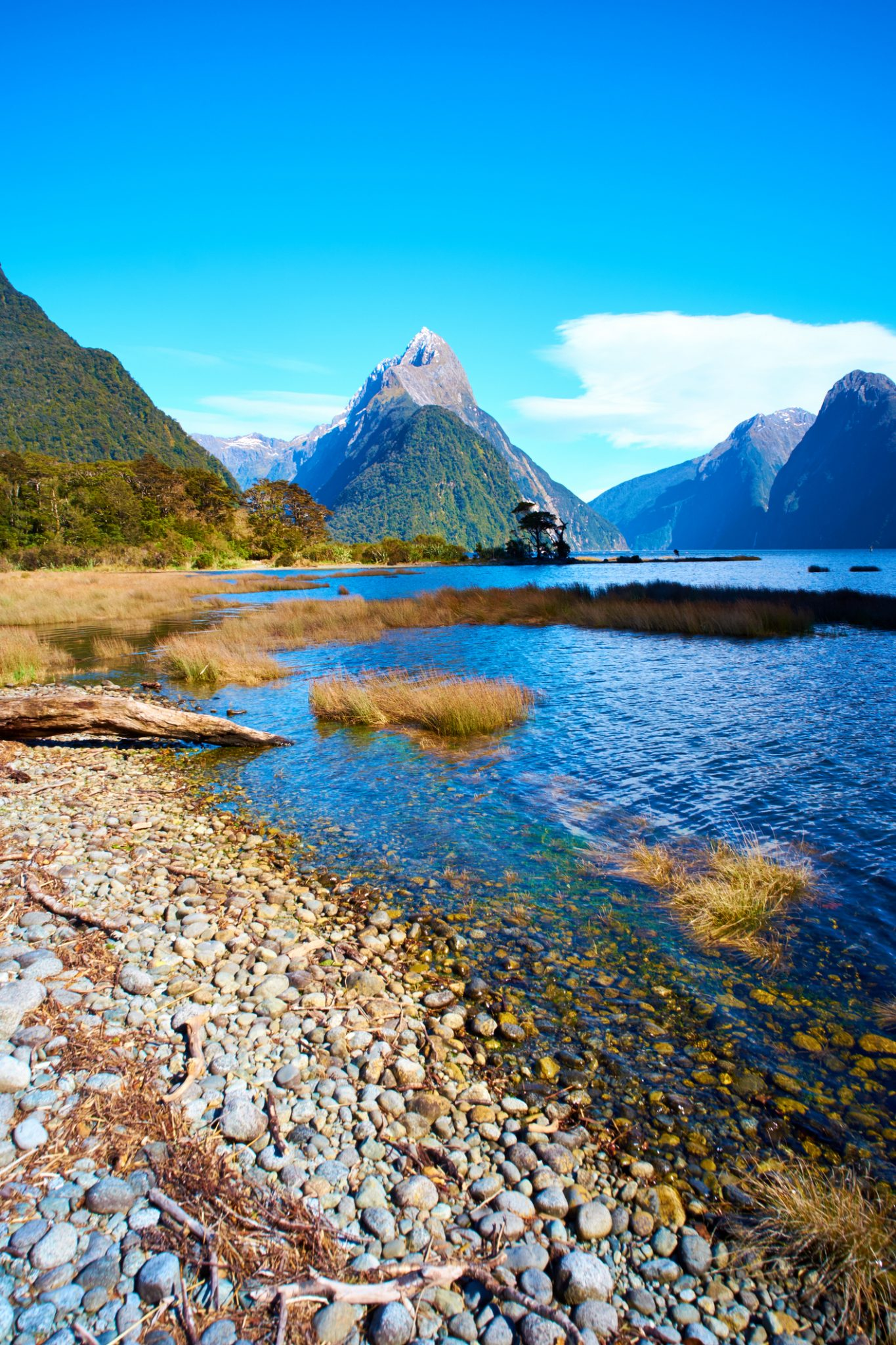 Milford Sound In New Zealand's Fiordland National Park