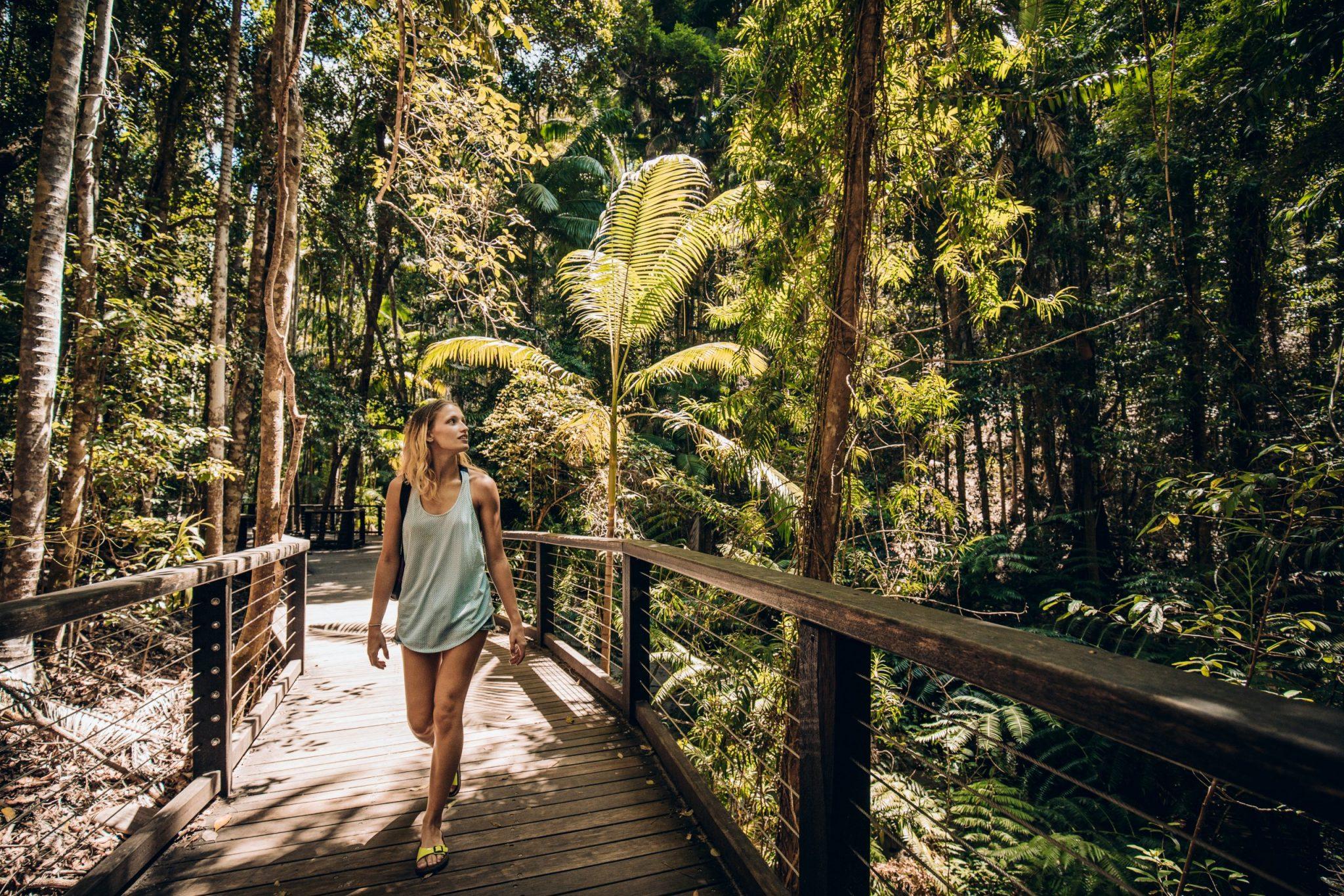 Cairns, Daintree NP, Mossman