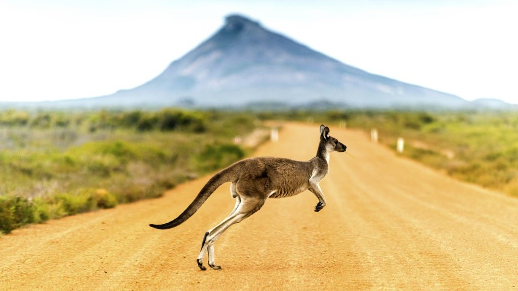 Základní rady na cestu do Austrálie