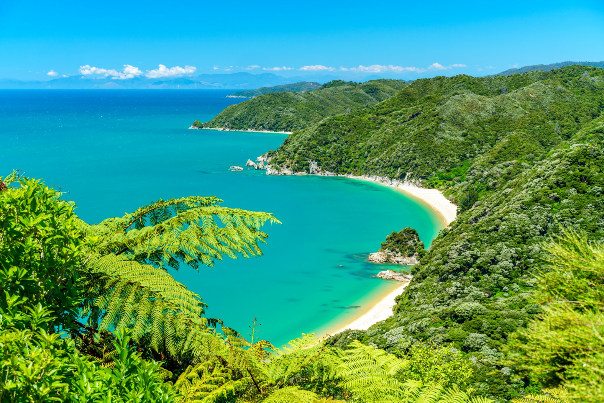 panorama of a beach, abel tasman national park, new zealand 9
